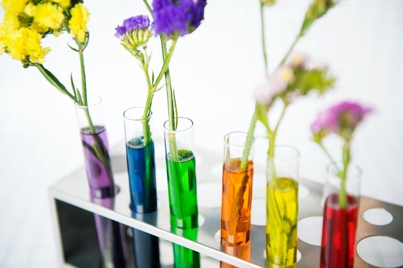 花と試験管