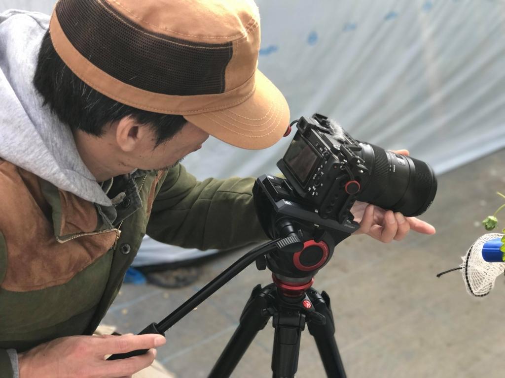 f:id:d-academy-saitama:20171208002811j:plain