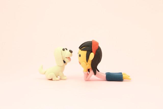 犬と飼い主の画像