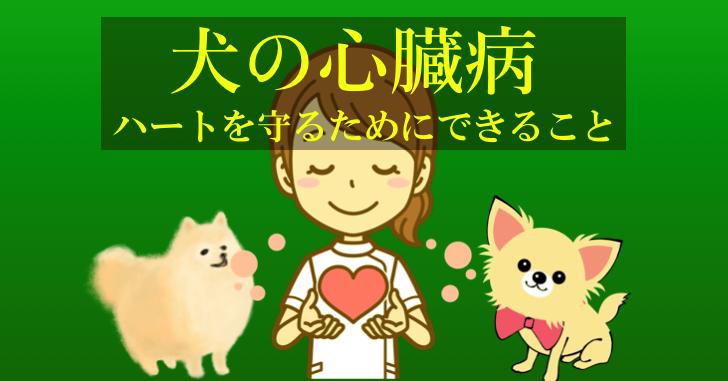犬、心臓病、飼い主にできること