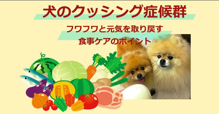 犬, クッシング, 食事