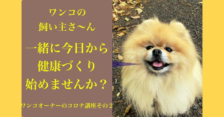 犬の飼い主, コロナ, 負けない, 健康講座