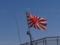 十六条旭日旗之圖