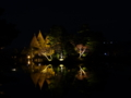 霞ヶ池に浮かぶ夜の蓬莱島之圖