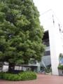 [むさむら聖地巡礼]武蔵村山市役所②