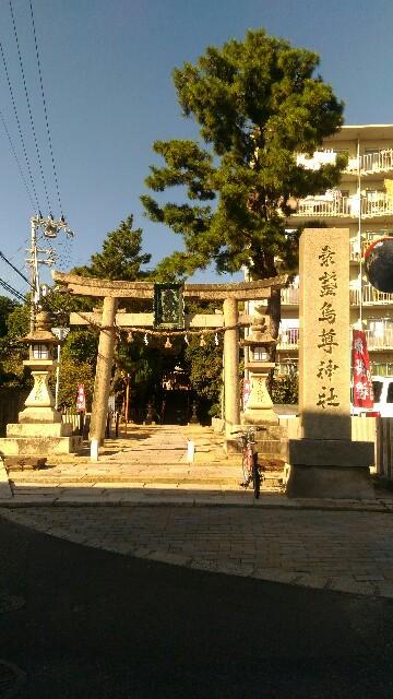 f:id:d-sk-nakasuji-the-world-is-a-mat:20161011112340j:image