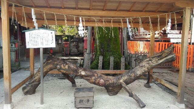 f:id:d-sk-nakasuji-the-world-is-a-mat:20170119222939j:image