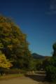 京都新聞写真コンテスト秋を撮る