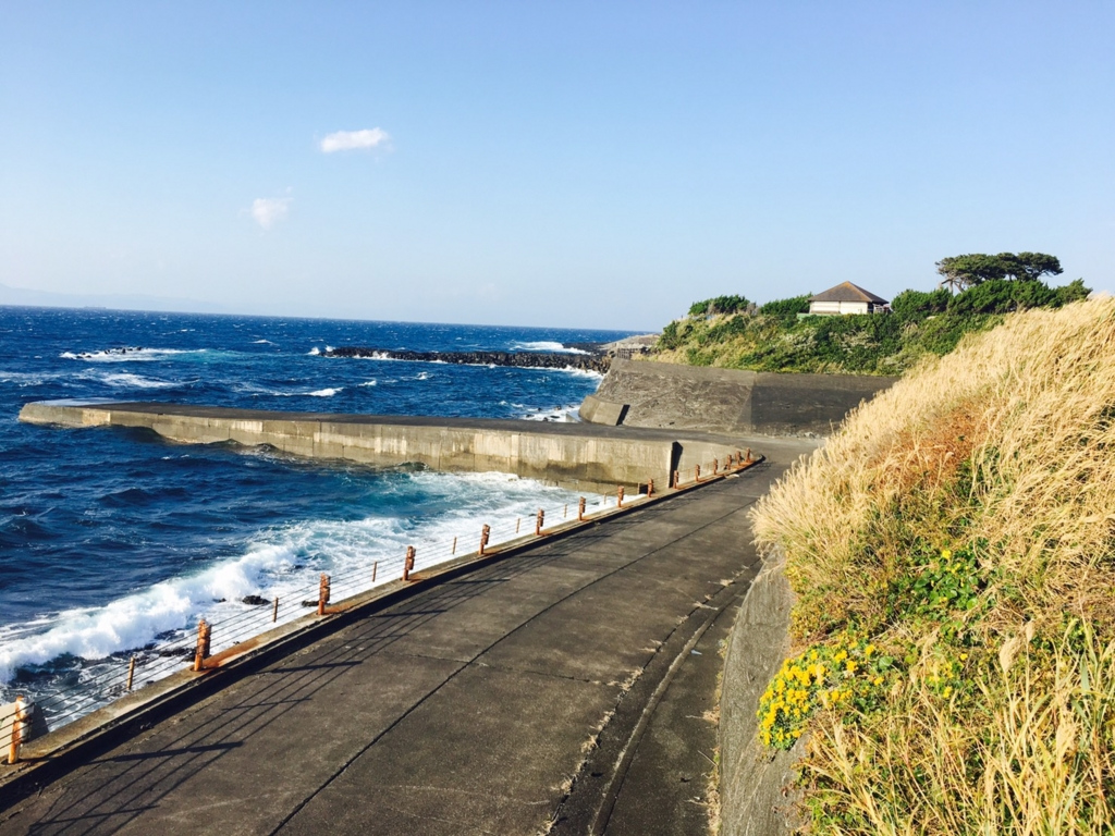 伊豆大島マラソン走ってきたから予約方法・練習方法をまとめる【フルマラソンの走り方まとめ】