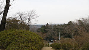 20100323104755