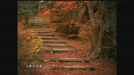 f:id:da-i-su-ki:20081103011554j:image