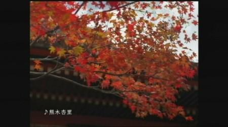 f:id:da-i-su-ki:20081103011555j:image
