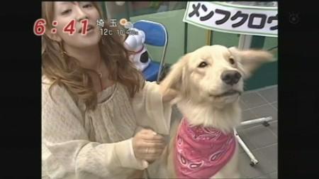f:id:da-i-su-ki:20090329103206j:image