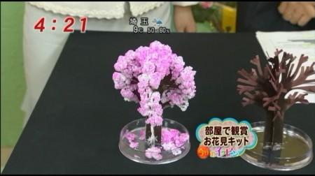 f:id:da-i-su-ki:20100327095046j:image
