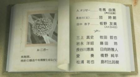 f:id:da-i-su-ki:20100924160008j:image