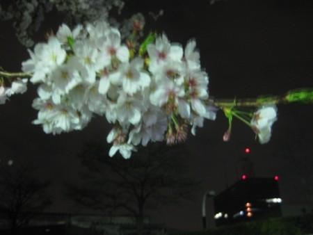 f:id:da-i-su-ki:20110410203103j:image