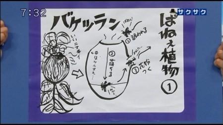 f:id:da-i-su-ki:20110507111933j:image