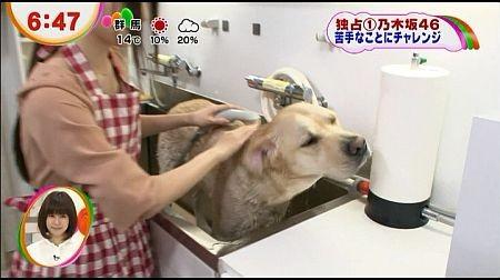 f:id:da-i-su-ki:20121115072506j:image