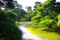 京都新聞写真コンテスト 二条城 みち