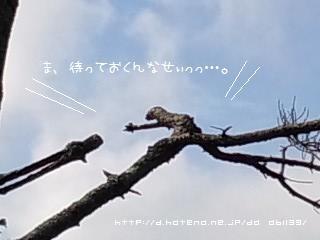 f:id:da_abll39:20121001222830j:image