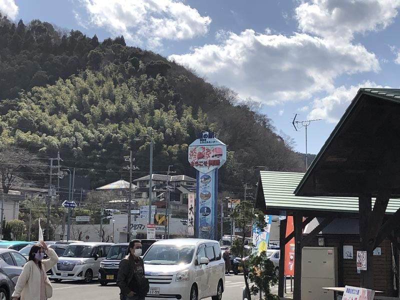 f:id:dachikusakun:20200402210959j:plain