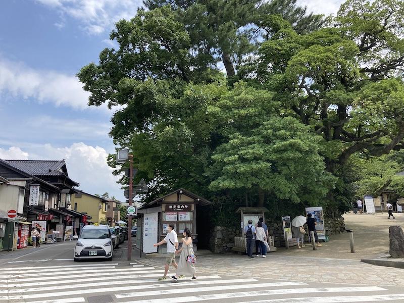 f:id:dachikusakun:20200810121639j:plain