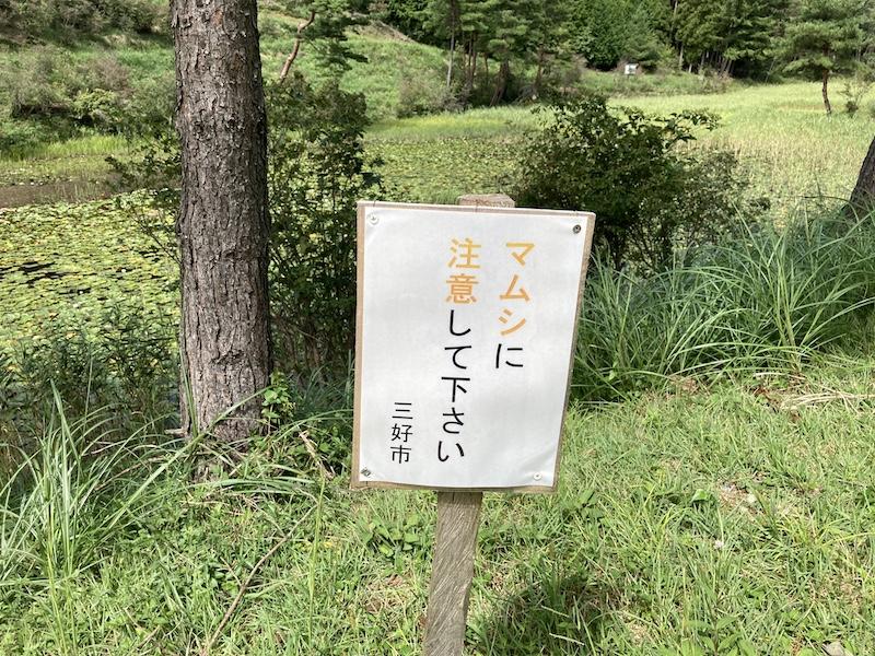 f:id:dachikusakun:20200919165106j:plain