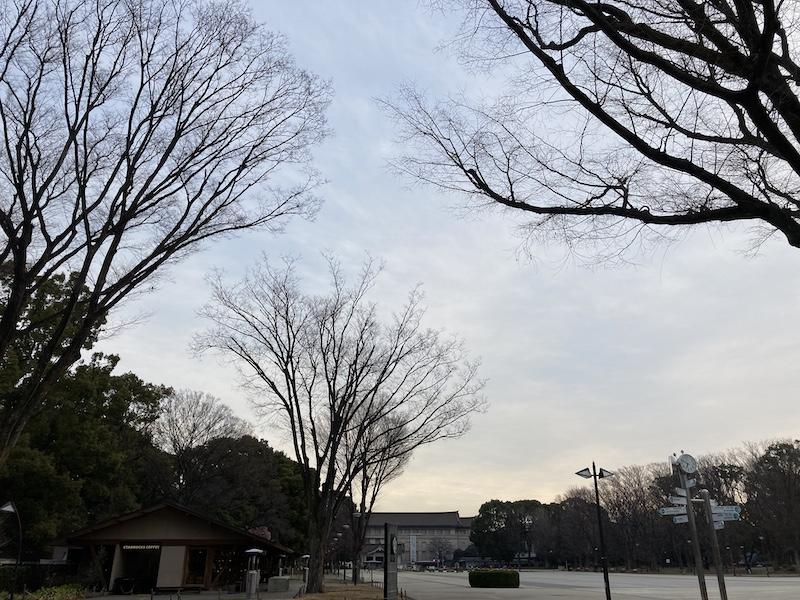 f:id:dachikusakun:20210215180359j:plain