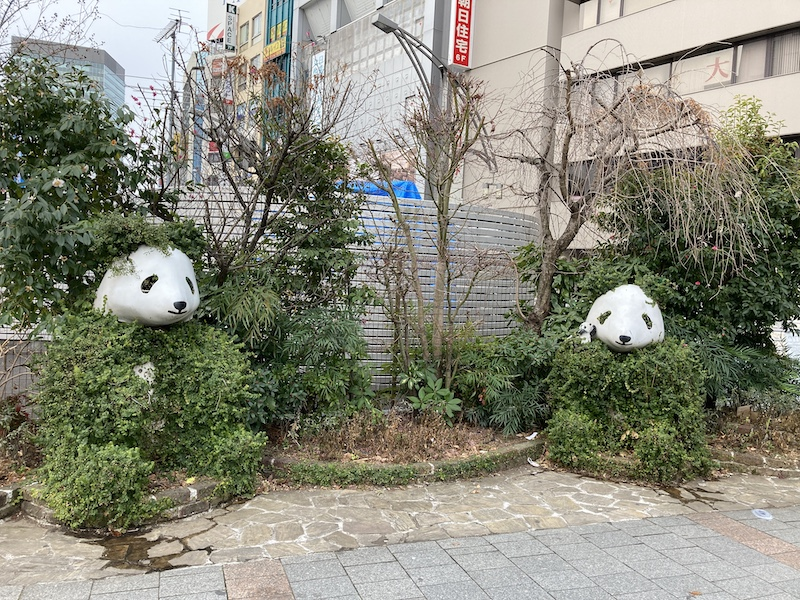 f:id:dachikusakun:20210215180430j:plain