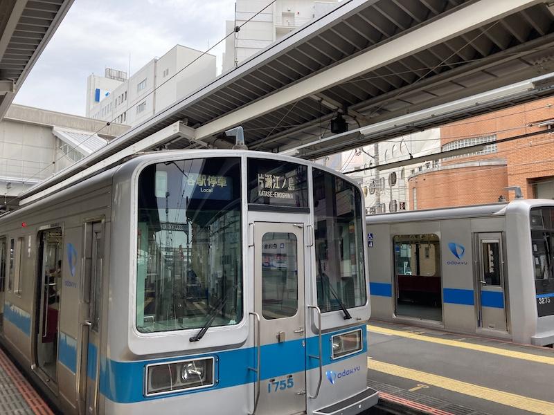 f:id:dachikusakun:20210215180849j:plain