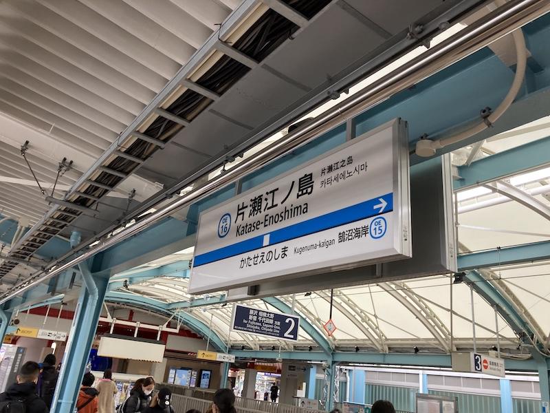 f:id:dachikusakun:20210215180958j:plain