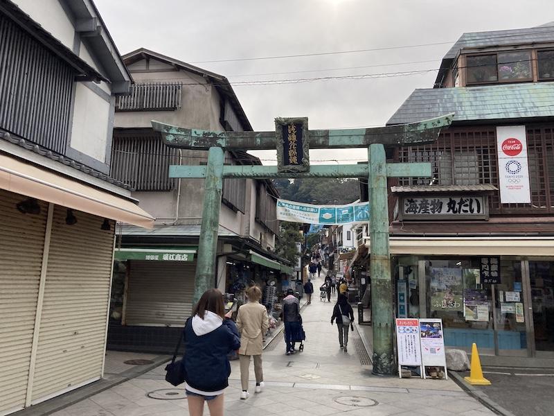 f:id:dachikusakun:20210215181033j:plain