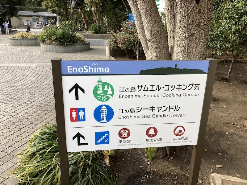 f:id:dachikusakun:20210215181147j:plain