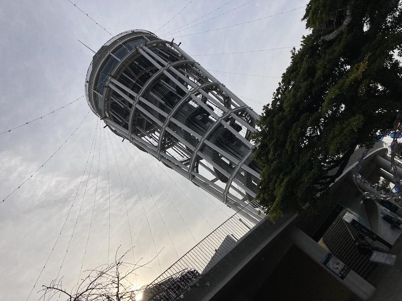 f:id:dachikusakun:20210215181228j:plain