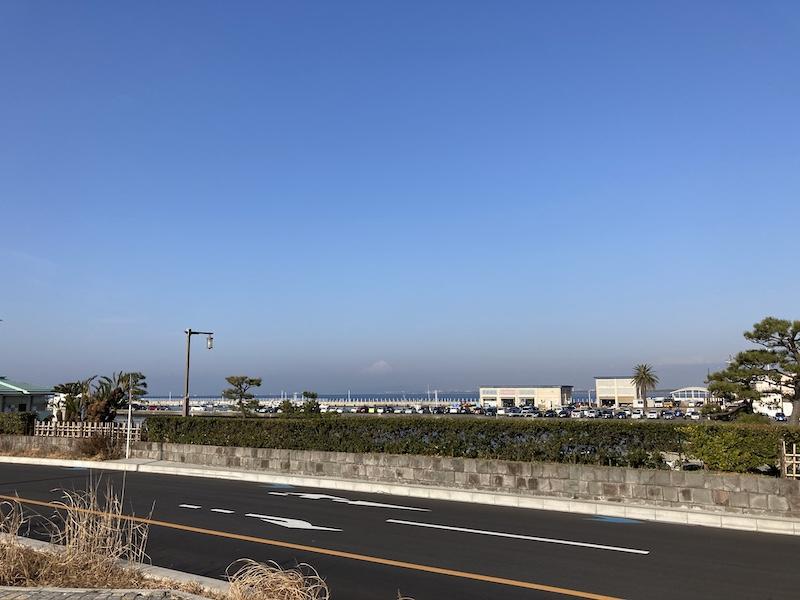 f:id:dachikusakun:20210215182249j:plain