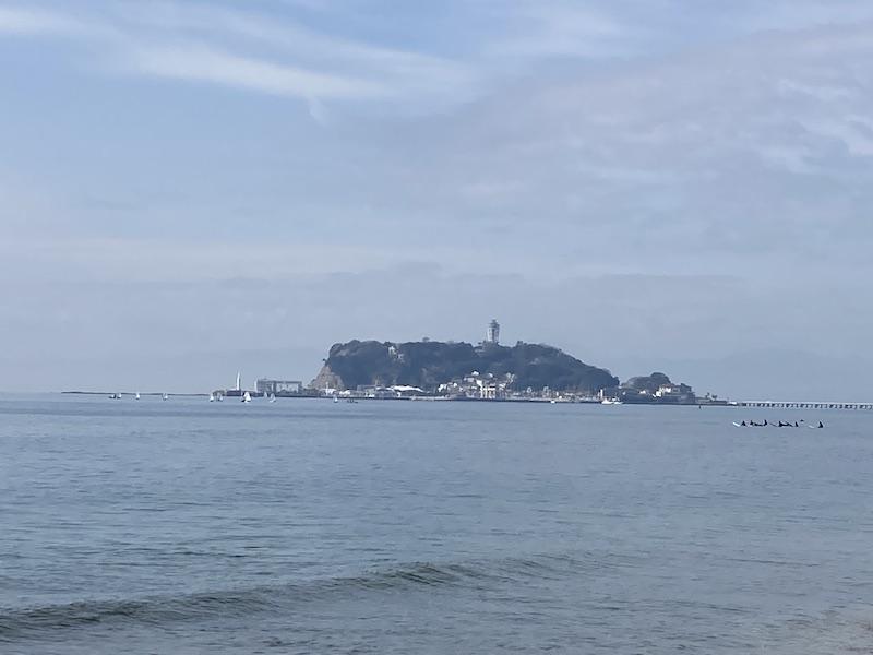 f:id:dachikusakun:20210215182426j:plain