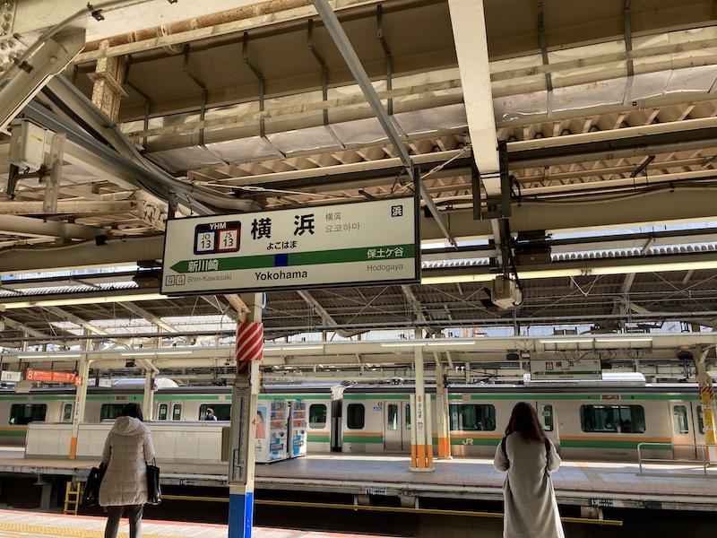 f:id:dachikusakun:20210215182507j:plain
