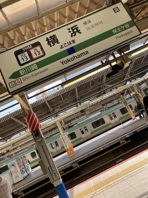 f:id:dachikusakun:20210215182630j:plain