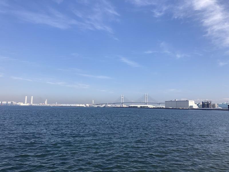 f:id:dachikusakun:20210215182819j:plain