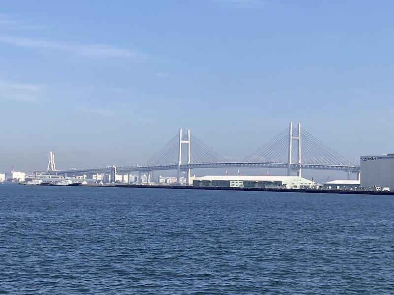 f:id:dachikusakun:20210215182832j:plain