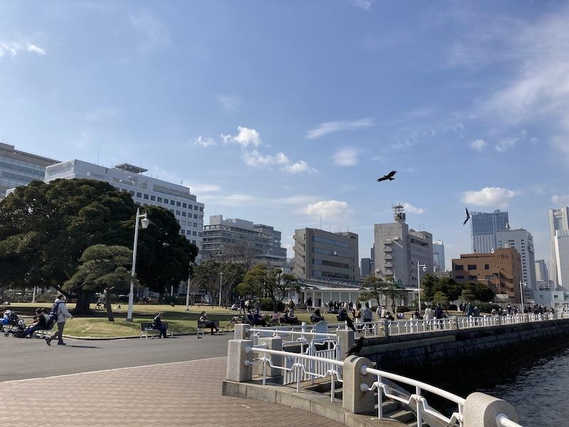 f:id:dachikusakun:20210215182836j:plain