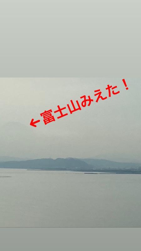 f:id:dachikusakun:20210225193514j:plain