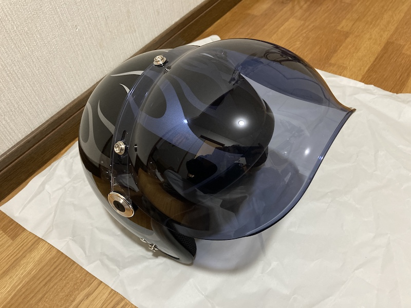 f:id:dachikusakun:20210309202847j:plain