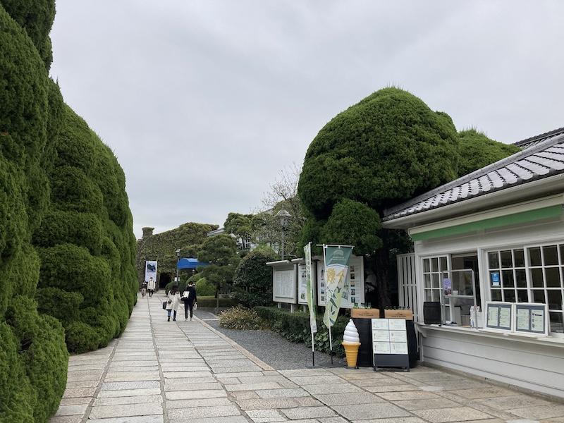 f:id:dachikusakun:20210506232757j:plain