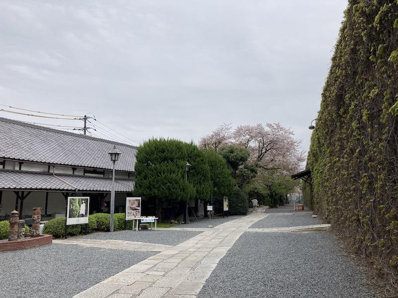 f:id:dachikusakun:20210506232940j:plain