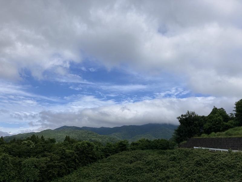 f:id:dachikusakun:20210615183448j:plain