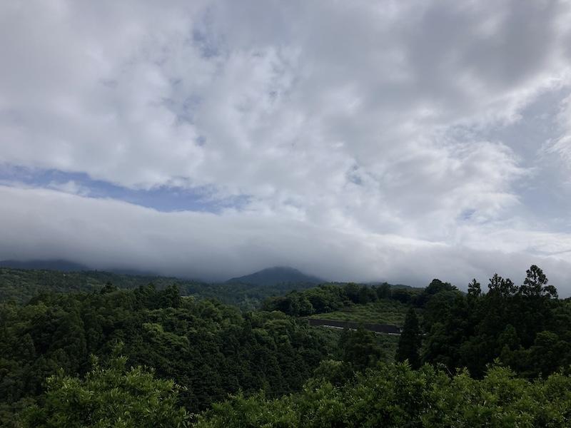f:id:dachikusakun:20210615183556j:plain