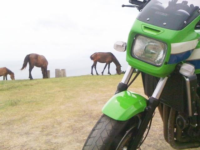 http://f.hatena.ne.jp/images/fotolife/d/dacho_rider/20090720/20090720145121.jpg