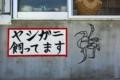 [2010.06][宮古島][伊良部島][渡口の浜][伊島観光サービス][ヤシガニ]
