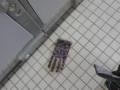 手袋は右手と左手どちらが多く落ちているのか